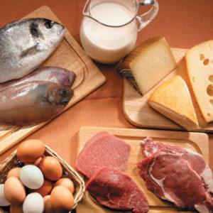 Inspección de fabricantes de productos de origen animal